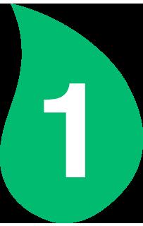 hoja1
