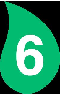 hoja 6