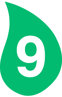hoja 9