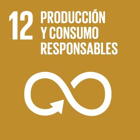 Objetivo de desarrollo sostenible 12:consumo resposable