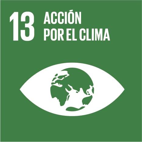 13:acción por el clima