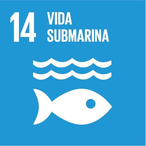 Objetivo de desarrollo sostenible 14:vida submarina